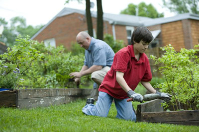 Boy working on a neighborhood garden